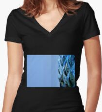 Glassware patterns Women's Fitted V-Neck T-Shirt