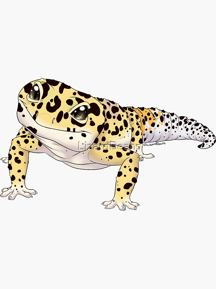 Leopard Gecko by LizardBeans