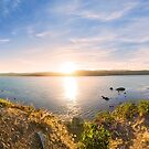 Sunrise over Wellington Harbour from the Benoit Trail above Breaker Bay by SeeOneSoul