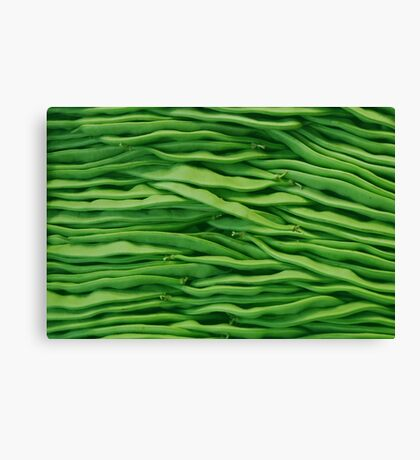 Beans in line Canvas Print