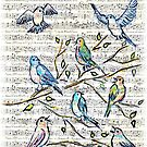 Songbirds by Robin Monroe