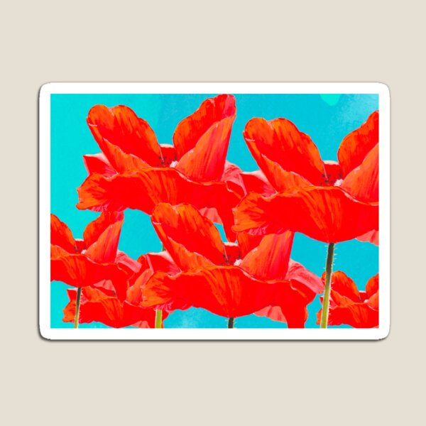 Painted Poppies Magnet