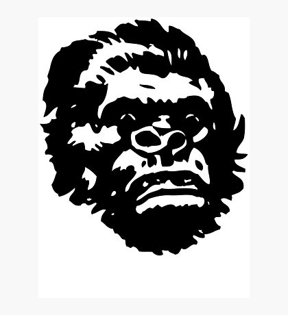 APES ICON Photographic Print