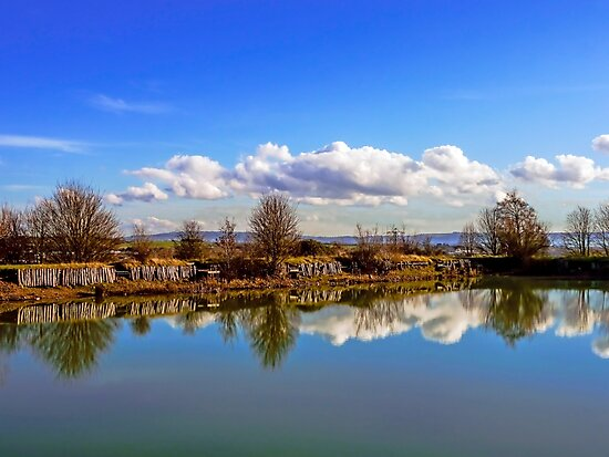 Double Take. by ScenicViewPics