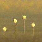 Musical Flowers by auroraarts1