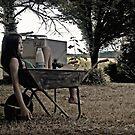 long days by Rebecca Tun