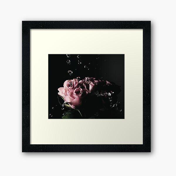 Wet Roses Framed Art Print