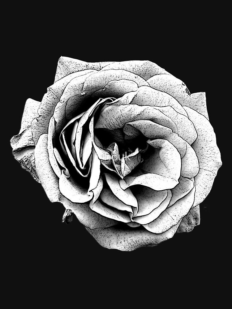 Black & White Rose by houk