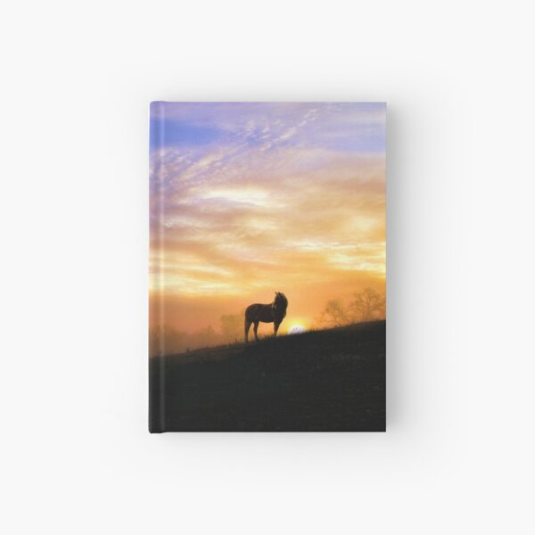Beautiful Horse and Light  Hardcover Journal