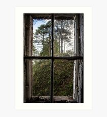 View from Decay II Art Print
