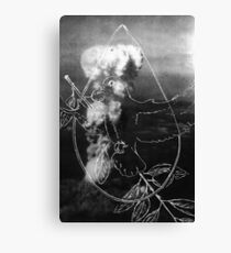 War and Peace Canvas Print