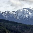 Majestic Mount Angeles  by Elaine Bawden