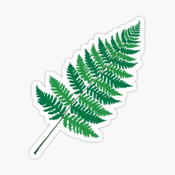 Dryopteris Fern Sticker