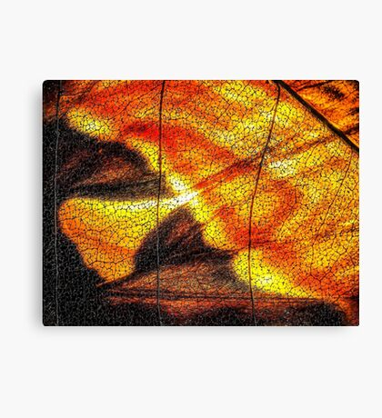 Hot Wing Canvas Print
