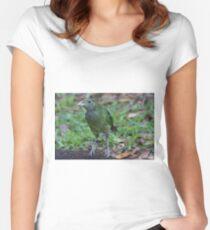 Baby Bowerbird Women's Fitted Scoop T-Shirt