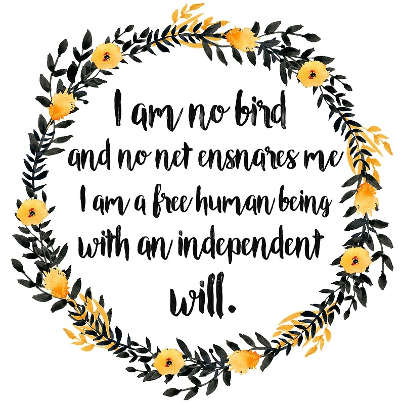 Image result for i am no bird no net ensnares me