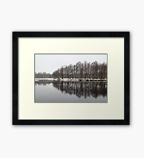 Trees reflected in water Framed Print