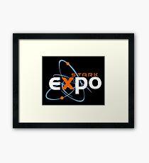 Stark Expo Framed Print