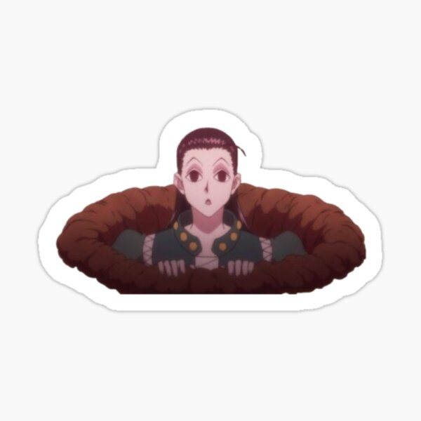 Hunters Exam Illumi Sticker