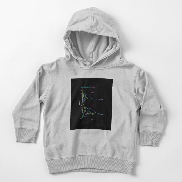 Hydrogen Atom Wave Functions Toddler Pullover Hoodie