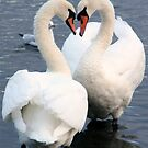 The Look of Love by Martina Fagan