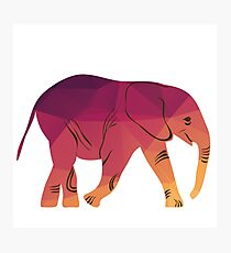 Geometric elephant pink colour Photographic Print