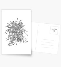 Succulents & Orchids - B&W Postcards