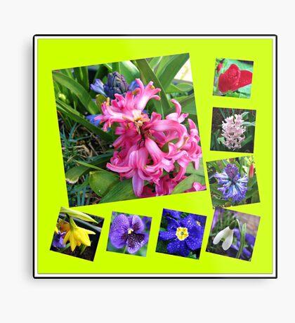 Verrückter Frühling Blumen Collage Metallbild