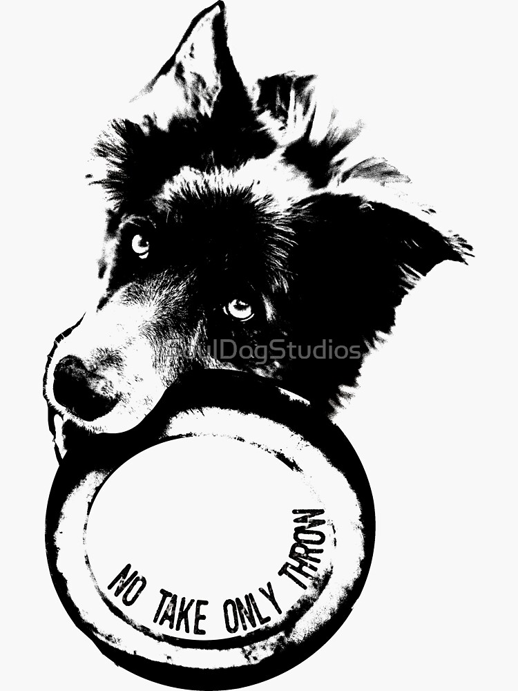 NO TAKE. ONLY THROW. (Border Collie) by SoulDogStudios