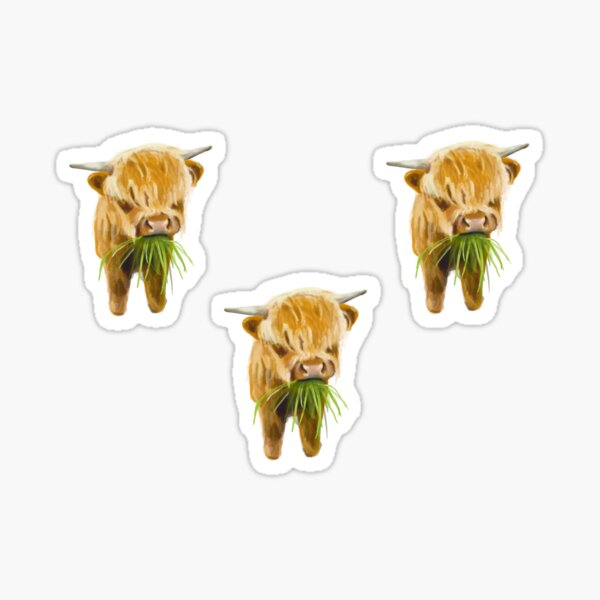 Baby Highland Cow - Coo - Watercolour Prints Sticker