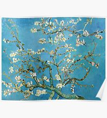 1890-Vincent van Gogh-Almond blossom-73.5x92 Poster