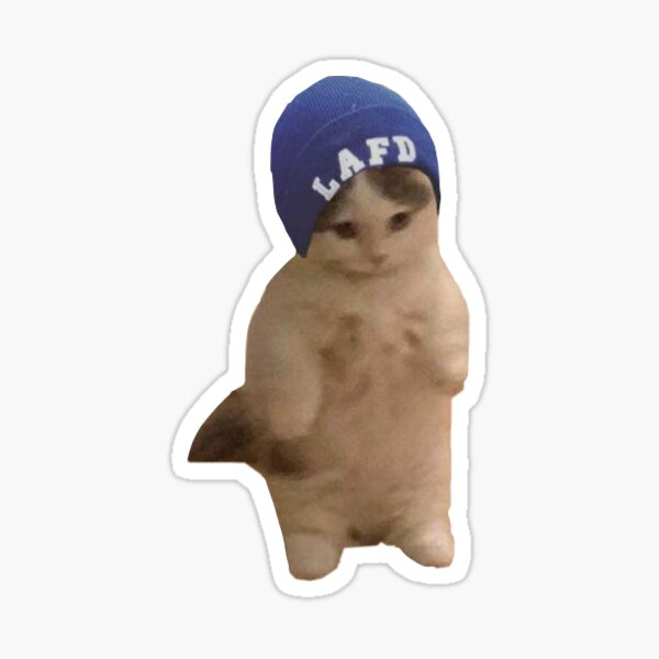 Quackity Beanie Cat Sticker