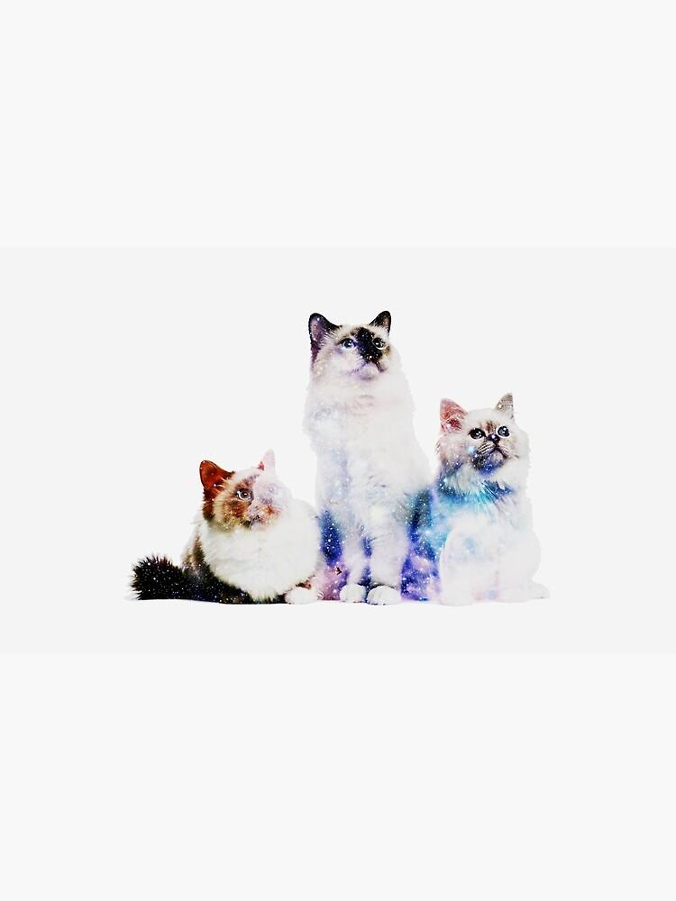 Kosmische Katzen von AlanPun