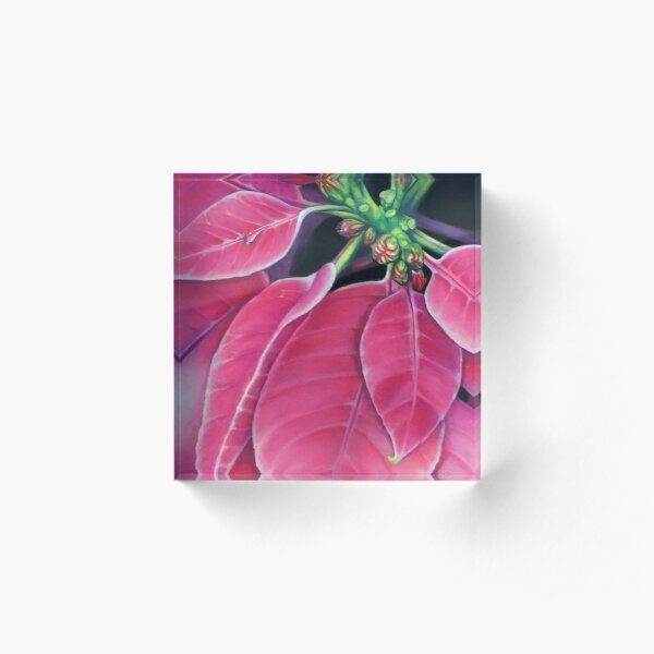 Pink Poinsettia Acrylic Block