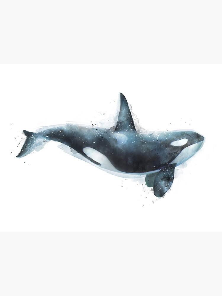 Orca by AmyHamilton