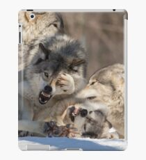 Timber wolves playing in winter iPad Case/Skin
