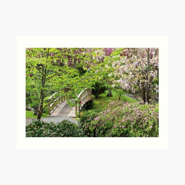 Bridge Mayne Island Japanese Garden Art Print