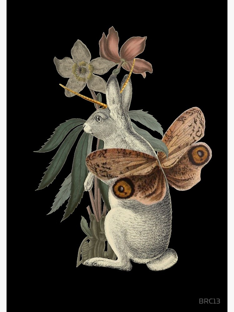 Papilio Jackalope by BRC13