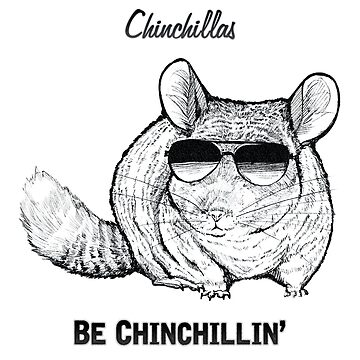 Chinchillas ser Chinchillin de Illustratorz