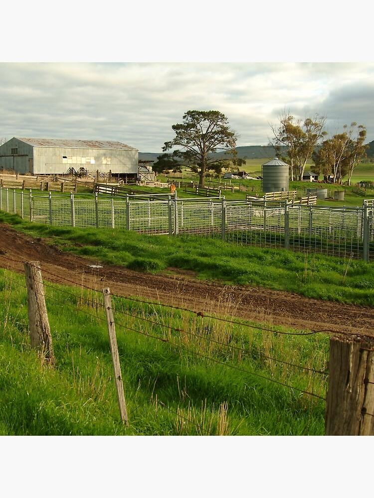Joe Mortelliti Gallery - Rowsley valley farm, near Bacchus Marsh, Victoria, Australia.  by thisisaustralia
