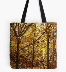 Joe Mortelliti Gallery - Spectacular autumn colours, Clunes, western Victoria. Tote Bag