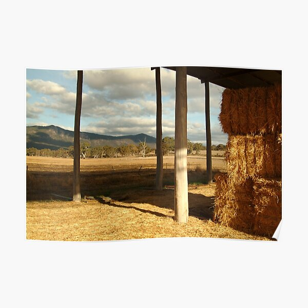 Joe Mortelliti Gallery - Hay Shed, Eversley, Mt Cole State Park, western Victoria Poster