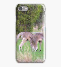 Kangaroos iPhone Case/Skin
