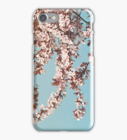 Flowering Cherrytree iPhone Case/Skin