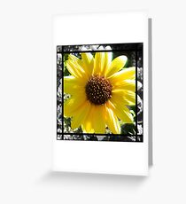 Sunflower for Annie Greeting Card