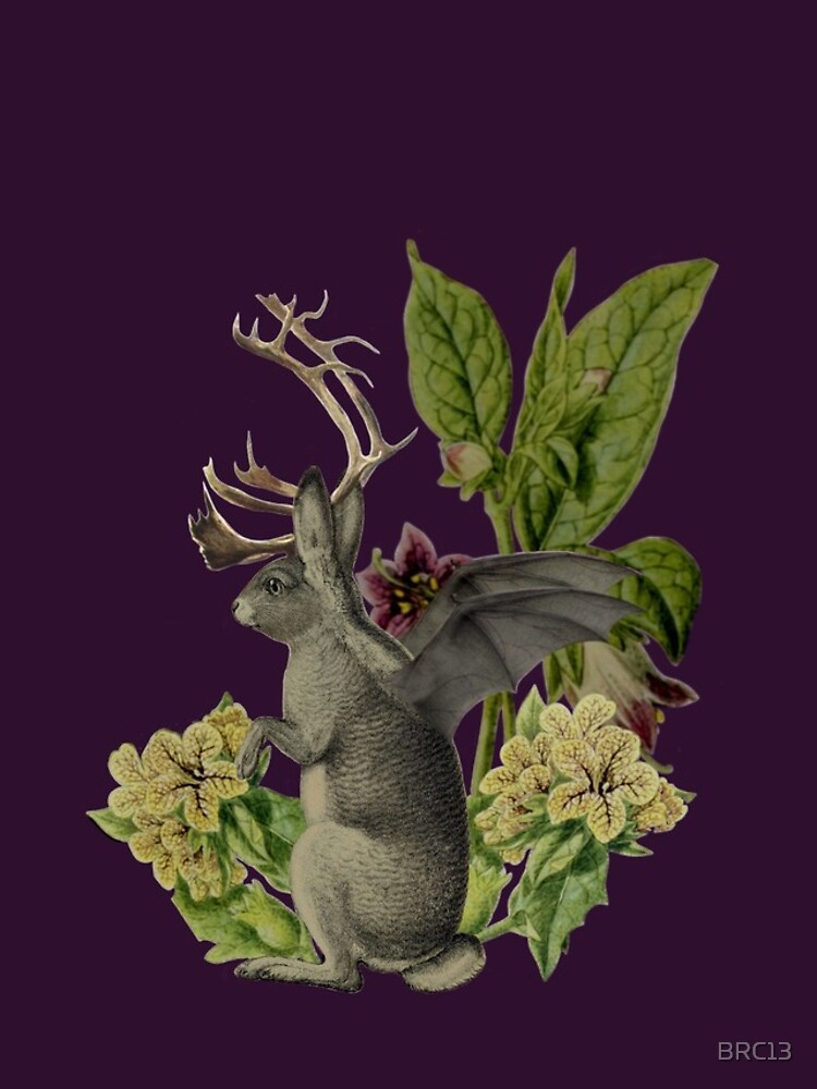 Jackalope Vespertilio (purple) by BRC13