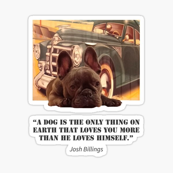 Buckó Frenchie / Famous Quotes About Dogs / Josh Billings Sticker