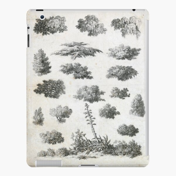 Vintage Foliage Studies Print iPad Snap Case
