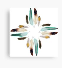 Feather Zia Sun God Canvas Print