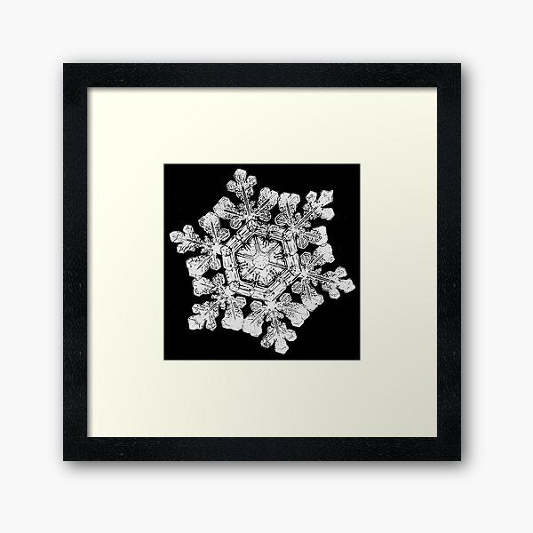 Wilson A. Bentley - Snowflake (1880s) Framed Art Print